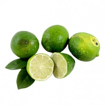 [못난이농산물] 멕시코 페르시안 흠집 알찬라임 3kg (업체별도 무료배송)