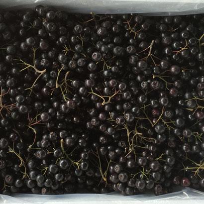 18년산 국내산 무농약 아로니아 생과 5kg (업체별도 무료배송)