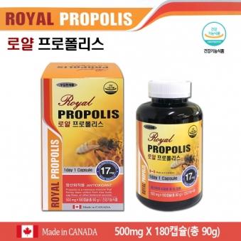 로얄 프로폴리스 500mg x 180캡슐 (캐나다완제품 총6개월분) (업체별도 무료배송)