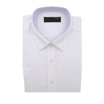 [로베르따] 빅사이즈 일반핏 화이트 무지 반소매 셔츠 RR2303_1(화이트) (업체별도 무료배송)