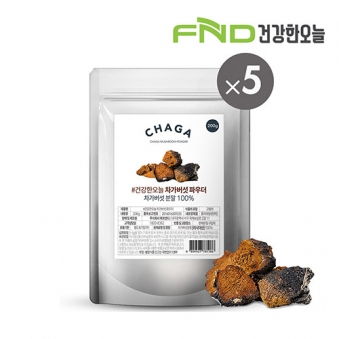 FND건강한오늘 러시아산 차가버섯 분말 1kg (200g x 5팩) (업체별도 무료배송)