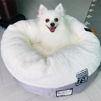 [떠리데이-무료배송관] 강아지 고양이 도넛 쿠션 스노우펫쿠션 마약방석+다용도애견담요증정(랜덤) (업체별도 무료배송)